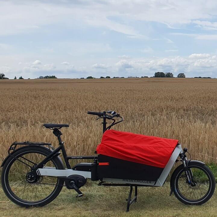 Riese und Müller Lastenrad Packster 60 auf einem Feld